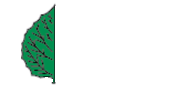 Aspen Hardwood Floors | West Chester, Pennsylvania